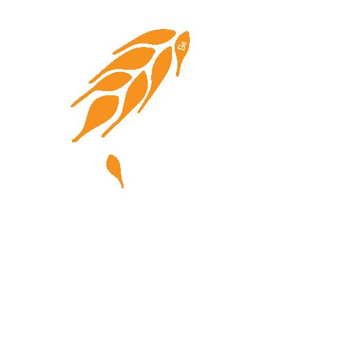 Logo Bio e Te Bianco